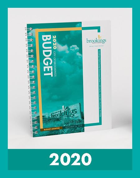 2020 Budget Book Cover