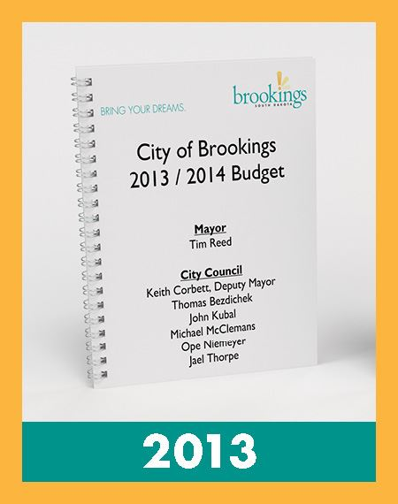 Photo of 2013 Budget Book Opens in new window