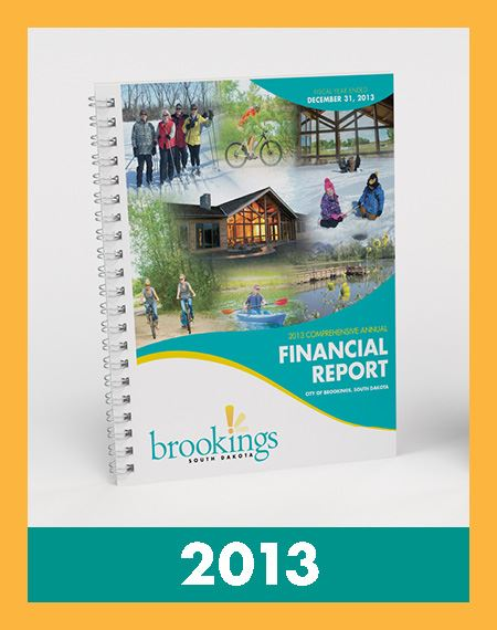 Image of Financial Reports 2013 Opens in new window