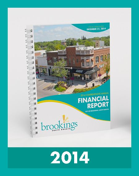 Image of Financial Reports 2014 Opens in new window