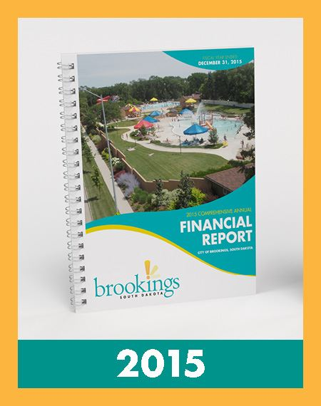 Image of Financial Reports 2015 Opens in new window