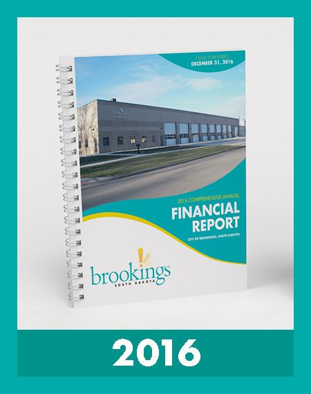 Image of Financial Reports 2016 Opens in new window