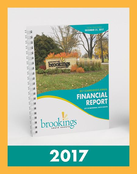 Image of Financial Reports 2017 Opens in new window