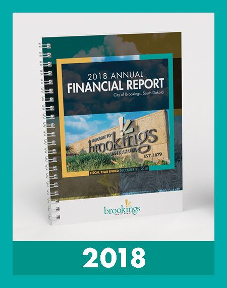 Image of Financial Reports 2018 Opens in new window