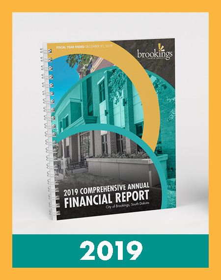 Image of 2019 Comprehensive Annual Financial Report book Opens in new window